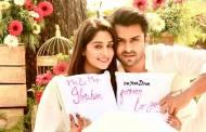 In pics: Shoaib Ibrahim and Dipika Kakar celebrate their first wedding anniversary