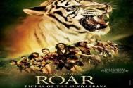 'Roar' - a bore you may abhor