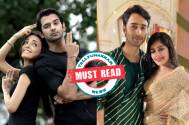 MUST READ! Take a peek at these 5 jodis we'd want to see on our TV screens once more.
