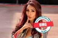 OMG! Kashmera Shah strikes back at Bigg Boss 14's Rubina Dilaik and Abhinav Shukla over THIS controversial tweet