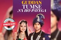 Guddan Tumse Na Ho Payega: Guddan in major trouble because of Alisha's silly game