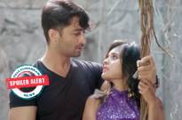 Yeh Rishtey Hain Pyaar Ke: MishBir unaware of new problem