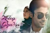 If Zindagi Gulzar Hai was made with Indian cast