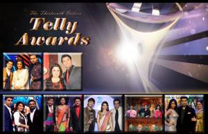 Vote for the Best Judge on a TV show at the 13th Indian Telly Awards