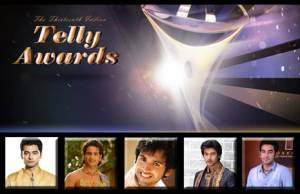 Best Fresh New Face (Male) at the 13th Indian Telly Awards