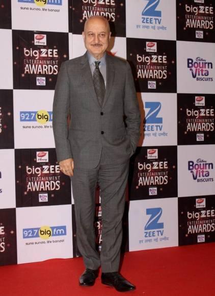 Salman Khan,Alia Bhatt, Mouni Roy & Divyanka Tripathi And Vivek Dahiya at the Big Zee awards red carpet